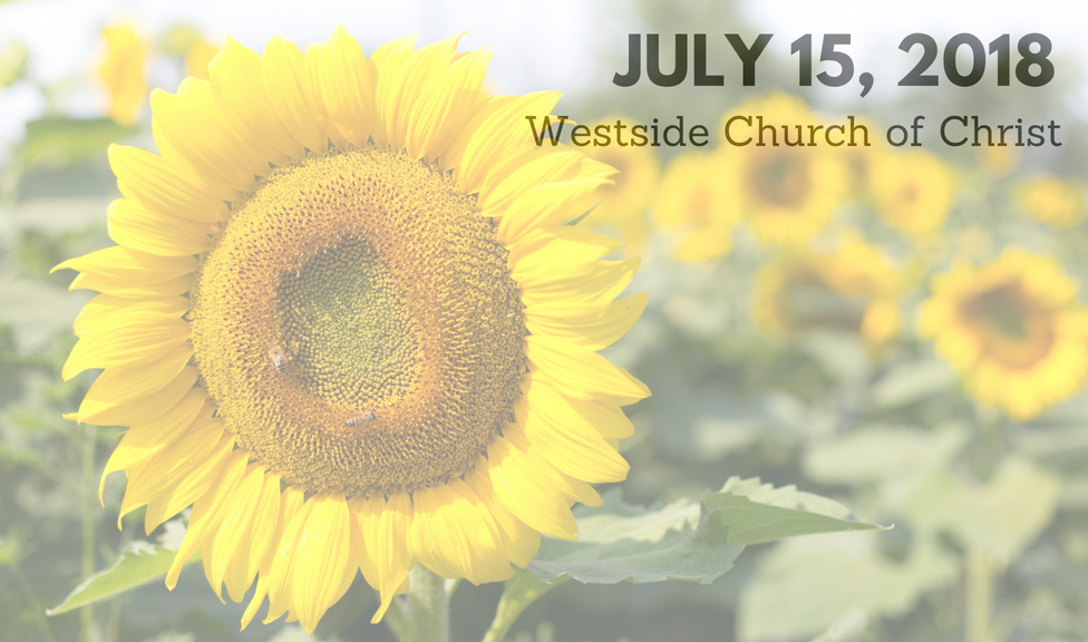 Westside News for July 15, 2018