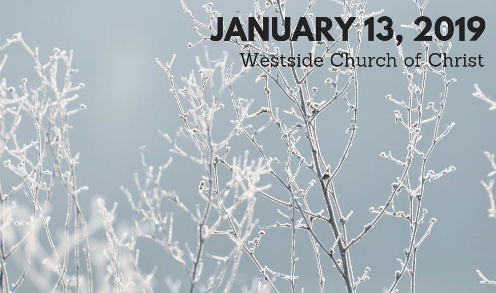 Westside News for January 13, 2019