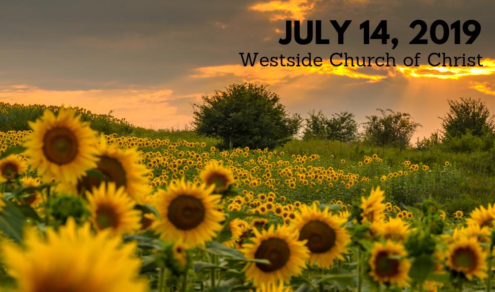 Westside News for July 14, 2019